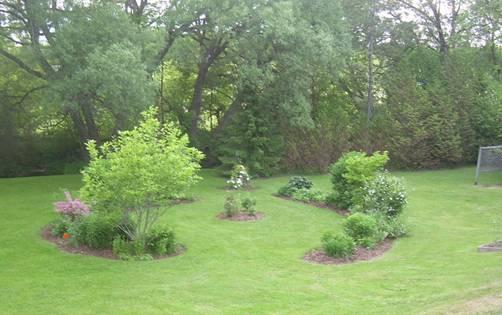 Blog Photo - Felicity garden